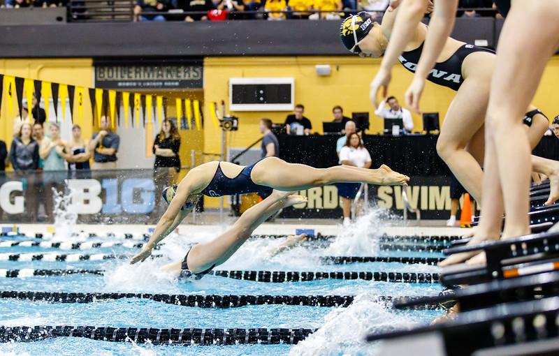 Purdue Swimming and Diving vs Iowa