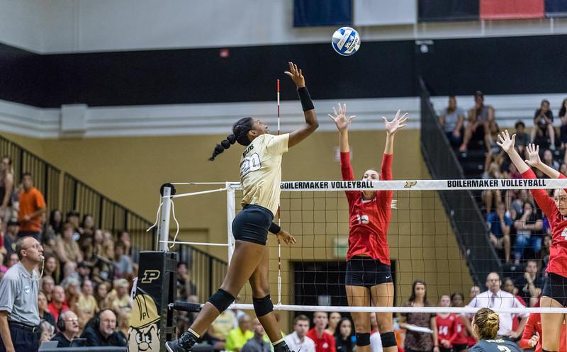 Purdue Volleyball vs Ohio State