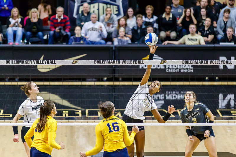 Purdue Volleyball vs