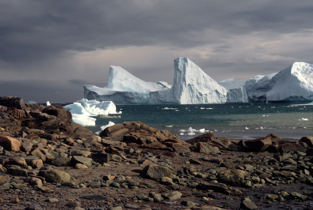 Disko Bay at Sarqaq