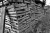 Wood obsession