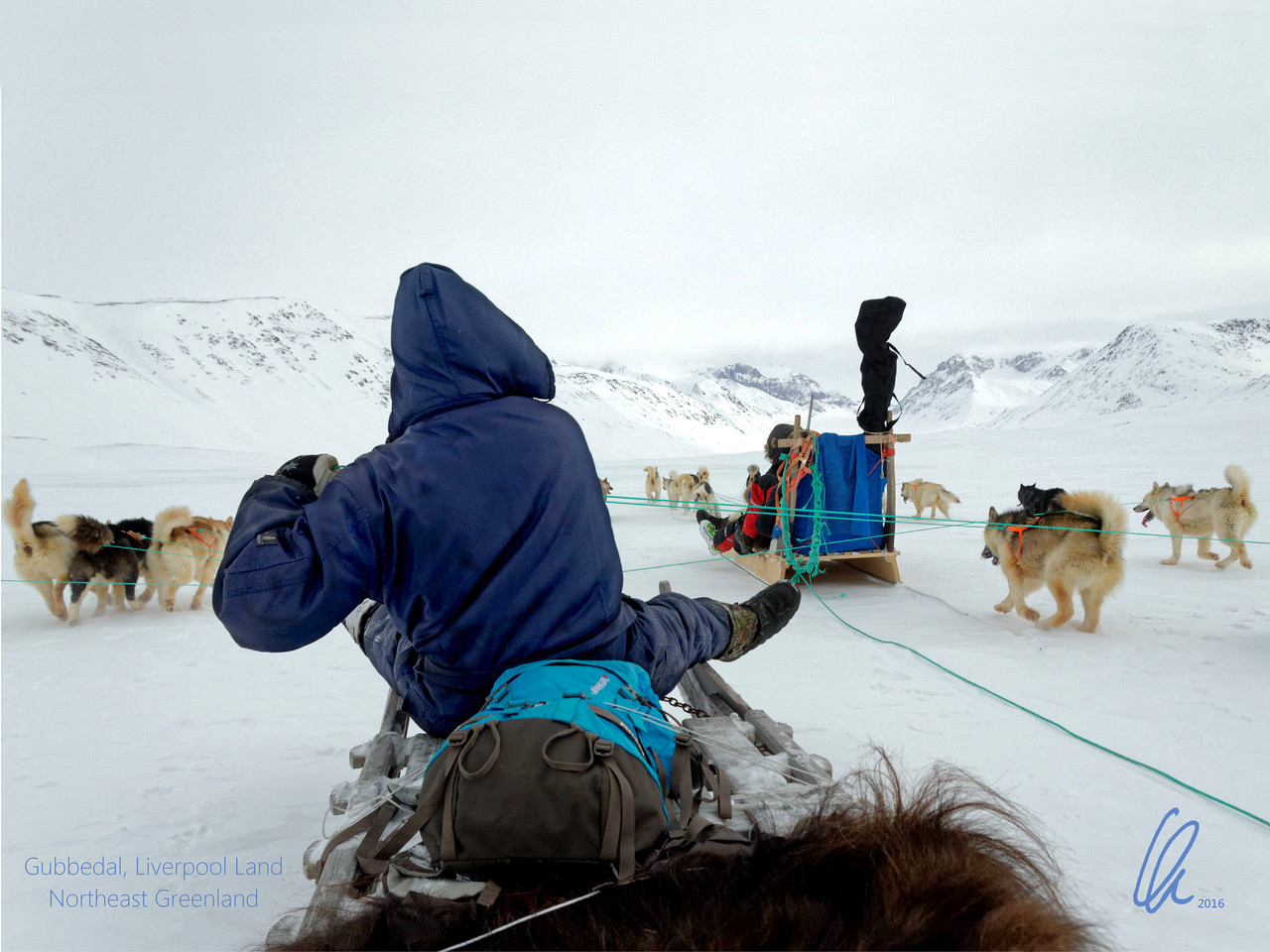 Dogsledge expedition