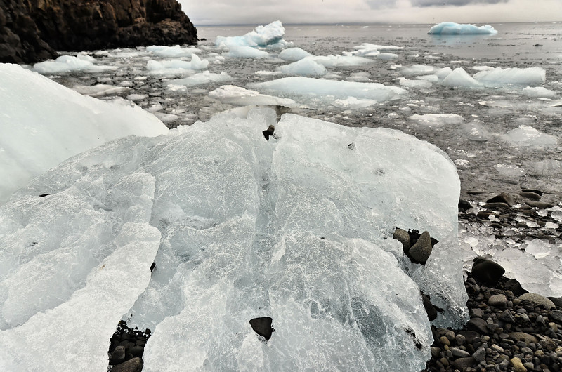 Stranded ice, Cape Fligely