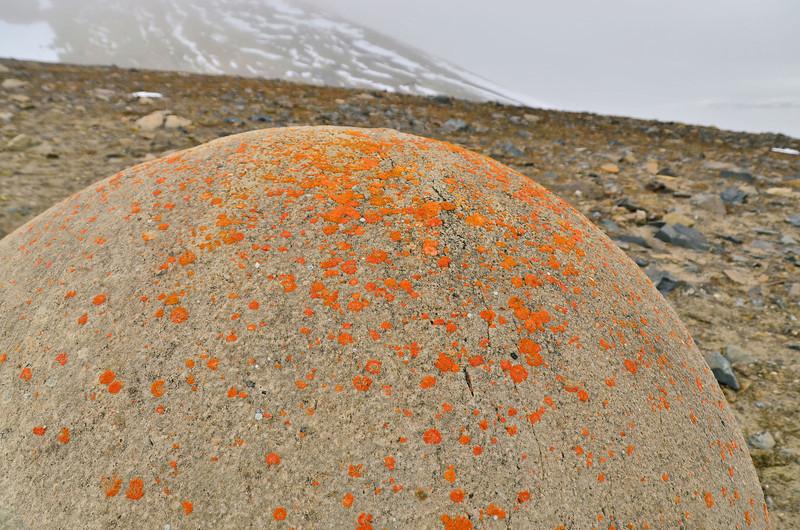 Geosphere on Champ Island, 1,5 m diameter