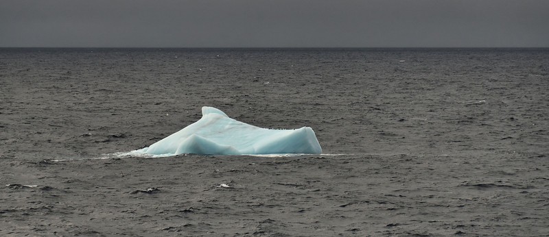 Going S from Cape Tegetthoff, last iceberg