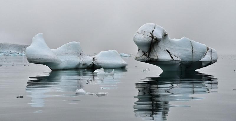 Organic Ice Shapes