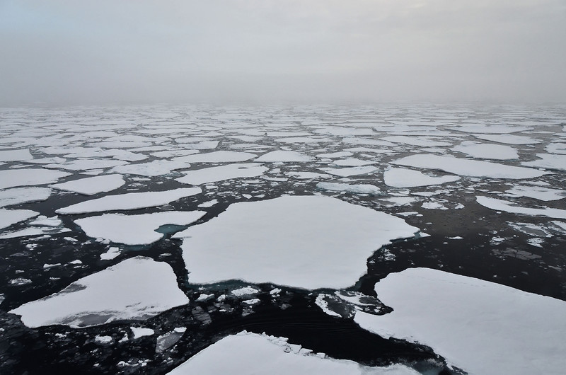 Arctic Ocean, 83° north of Franz Josef Land