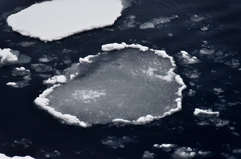 Pancake ice, north of Rudolph Island