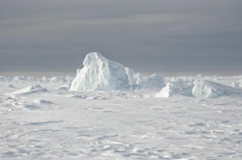 Walrus Bay, Ittoqqortoormiit