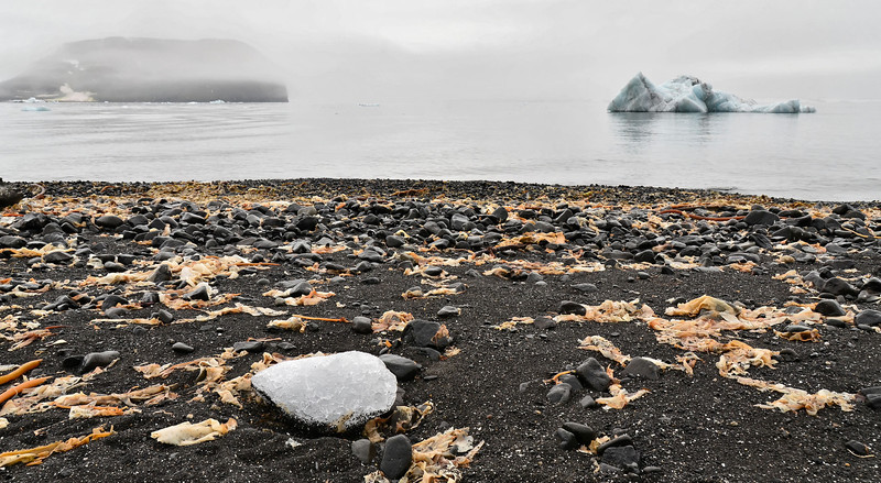Solitair ice piece, Sedov Station beach, Hooker Island