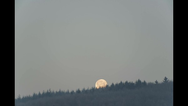 The day after red moon: nearly full moonset, 22nd Jan. 2019