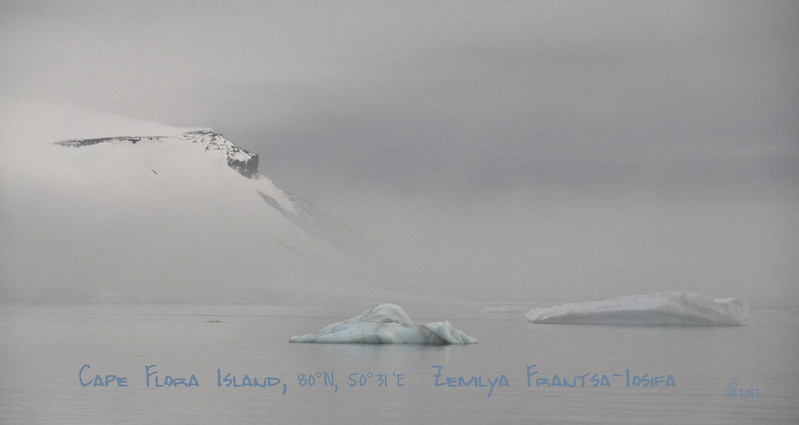 Arctic Pureness