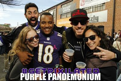 Purple Pandemonium 10.09.16