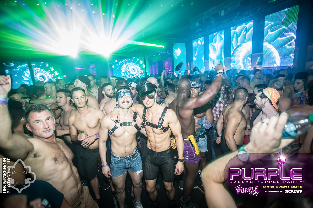 THE PURPLE PARTY | Main Event 2016
