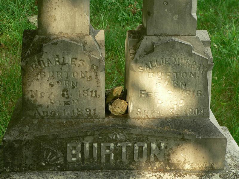 burton009