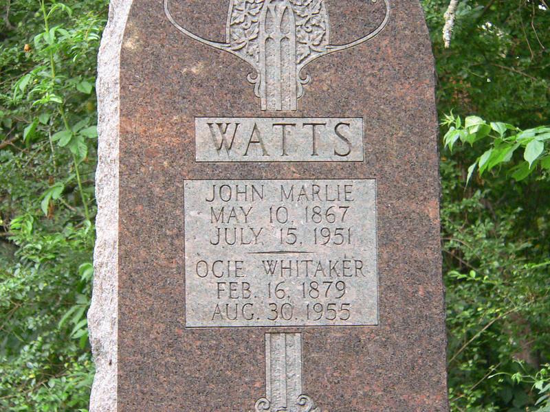 watts001