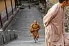 Moines bouddhistes dans une allée du temple Fayu sur l'île sacrée de Putuo Shan. Province du Zhejiang/Chine