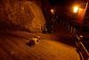 """Femme pèlerin effectuant un arrêt de prière lors de son ascension de l'île bouddhique de Putuo Shan. L'île constitue l'un des lieux de """"résidence"""" de Guanyin, divinité censée aider les femmes dans leurs souhaits de maternité. Province du Zhejiang/Chine"""