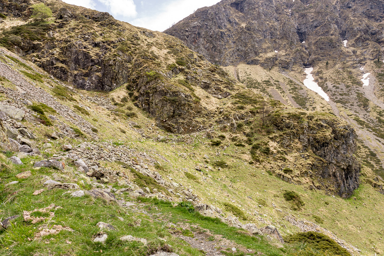 Hiking to the edge of the national park (the butress) - no dogs allowed past there