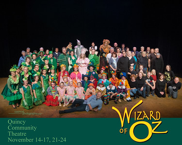 QCT Wizard of Oz