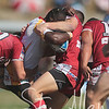 Redcliffe Dolphins V png hunters