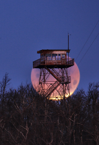 Blue Blood Super Moon Eclipse - Rich Mountain Fire Tower - Queen Wilhelmina State Park