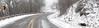 Icy Winter Drive- Queen Wilhelmina State Park