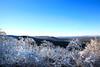 Winter Ice  Queen Wilhelmina State Park
