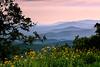 Pure Summertime - Queen Wilhelmina State Park - Arkansas