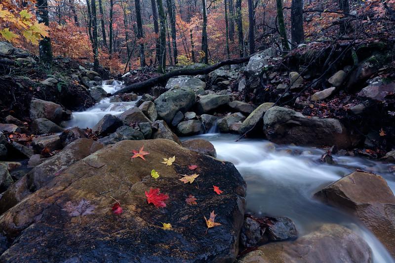 Falls of Autumn - Ouachitas of Arkansas - Nov 17, 2015