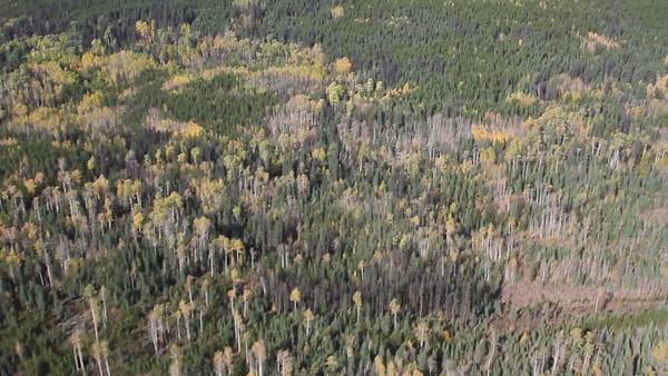 2012-09-26 Aerial Videos