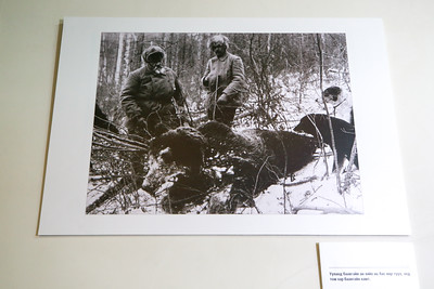 """2020 оны аравдугаар сарын 29.  Монголд 1921-1936 онд амьдарч байсан Дани улсын иргэн К.П.Албертсон, К.И.Кребс, Л.Тайдманд нарын авсан гэрэл зургийн """"Монгол орон, Монголчууд"""" үзэсгэлэн.  ГЭРЭЛ ЗУРГИЙГ Б.БЯМБА-ОЧИР/MPA"""