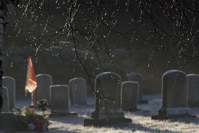 Graves In Spring Rain