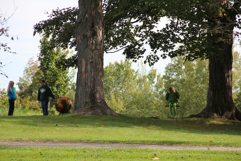 Trees, and children and a swing. What else could be needed?