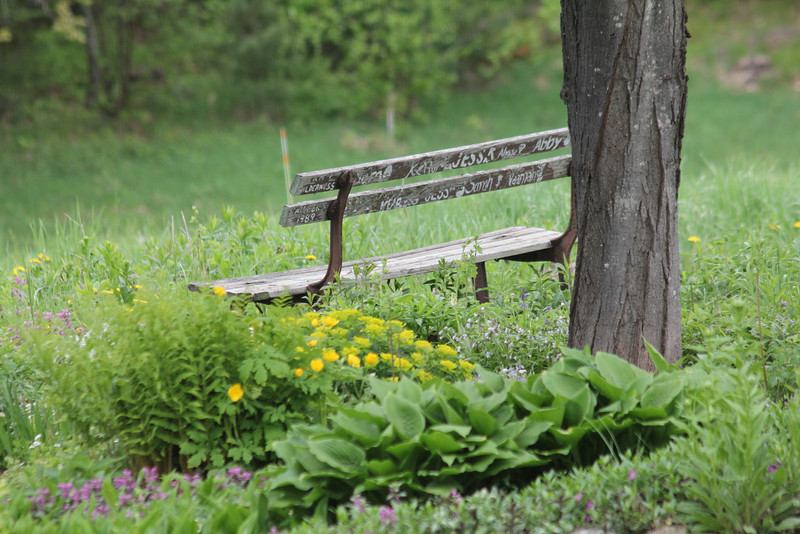 """Love the outdoor bench, and the """"graffiti"""" on the back!"""