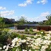 Qualico_Sherwood_Park_Summer_Wood_07_2012_IMG_5481