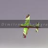 DSC_7171 NEF