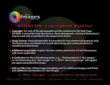 CMACphotoCopyright2018