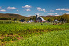 A farm, barn and silo near Brebeuf, Quebec, Canada.