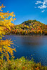 Fall foliage color in the sugar maple trees in Mont-Orford National Park, Orford, Quebec, Canada.