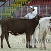 QCProvincial15_IMG_9941