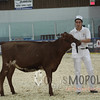 QCProvincial15_IMG_9942