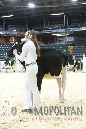 Quebec_Spring_Jnr_Holstein_Show_2016_L32A8597
