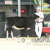 Quebec_Spring_Jnr_Holstein_Show_2016_L32A8596