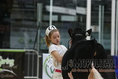 Quebec Spring Jnr Holstein Show 2016