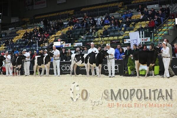 Quebec_Spring_Jnr_Holstein_Show_2016_L32A8618