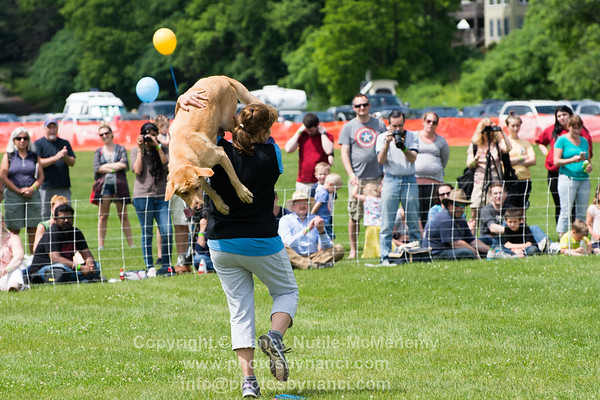 Pups in The Air