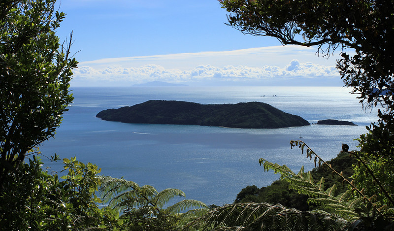Motuara Island (and I think it's Kapiti far away)