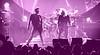 ArenaBirmingham QAL purple