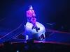 jojo_iow  #Queen #AdamLambert #rodlaver #melbourne #KillerQueen